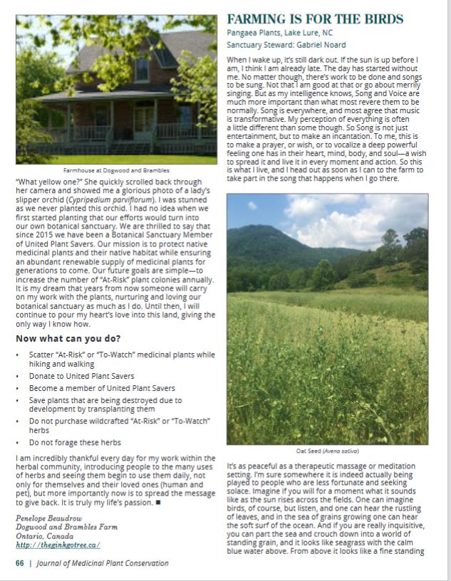 UPS article 2020pg66
